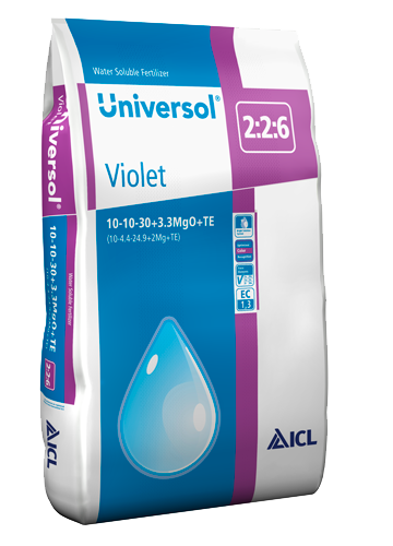 Universol Violet