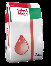 Select Mag S