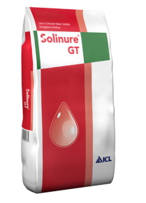Solinure GT Solinure GT 31