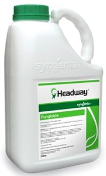 Fungicides Headway
