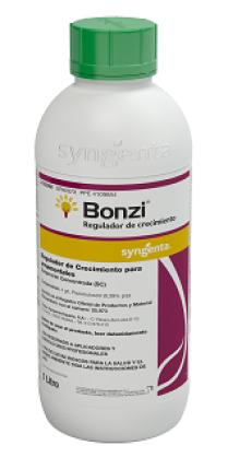 Bonzi